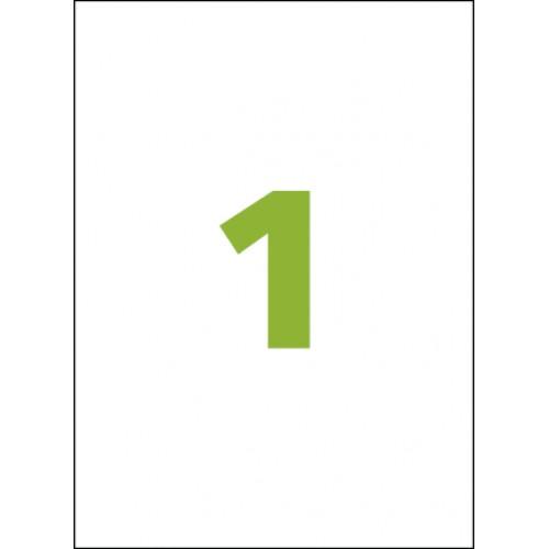 Etiqueta Adesiva Carta CC185 279,4 x 215,9 mm 100 Folhas Colacril - ColaCril - CC185